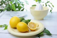 柑橘剥削者和新鲜的柠檬使用做柠檬水 库存图片