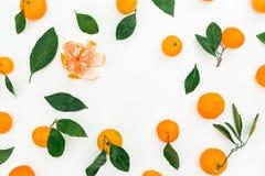 柑橘和叶子圆的框架在白色背景 平的位置 顶视图 库存图片