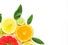 柑橘在白色背景-与薄荷叶的被分类的柑橘水果的食物角落 背景查出的白色 免版税图库摄影