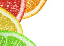 柑橘工厂 图库摄影