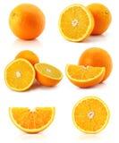 柑橘收集果子查出的橙色白色 免版税库存图片