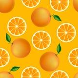 柑橘无缝的样式用桔子 库存照片
