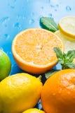 柑橘有机果子和被对分的桔子品种整个切了柠檬石灰在蓝色背景的新鲜薄荷叶子与水下落 免版税库存图片