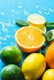 柑橘有机果子和被对分的桔子,在浅兰的背景的切的柠檬石灰新鲜薄荷品种整个与水下落 免版税图库摄影
