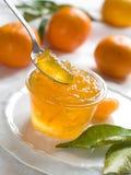 柑橘果酱 免版税库存图片