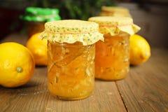 柑橘果酱 库存照片