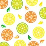 柑橘模式 免版税库存照片