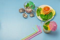 柑橘水果庆祝的鸡尾酒  桔子,柠檬,薄菏 鸡尾酒的,鸡尾酒的伞多彩多姿的管 玻璃古芝 库存照片