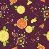 柑橘混合 无缝的模式 伯根地背景 向量例证