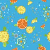 柑橘混合 无缝的模式 蓝色 皇族释放例证
