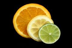 柑橘片式 库存图片