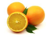 柑橘甜点 库存图片