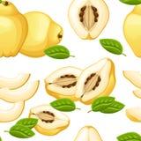 柑橘的无缝的样式与整个叶子的和切片柑橘 柑橘的传染媒介例证 decorat的传染媒介例证 免版税库存图片