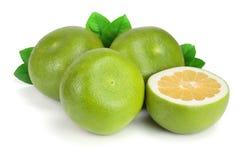 柑橘糖果或Pomelit、在白色背景特写镜头隔绝的oroblanco与一半和叶子 免版税库存照片