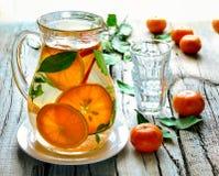 柑橘被灌输的水 免版税库存照片