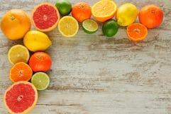柑橘静物画 免版税库存图片