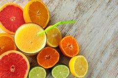 柑橘静物画 库存照片