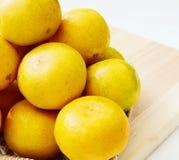 柑橘水果和橙汁。 免版税库存图片