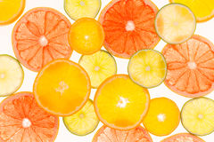 柑橘水果柠檬石灰桔子 种类水彩的接近的概念油漆盘 健康的食物 抽象派 免版税库存图片