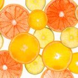 柑橘水果柠檬石灰桔子 种类水彩的接近的概念油漆盘 健康的食物 抽象派 图库摄影