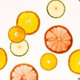 柑橘水果柠檬石灰桔子 种类水彩的接近的概念油漆盘 健康的食物 抽象派 免版税库存照片