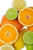 柑橘水果柠檬石灰桔子 免版税图库摄影