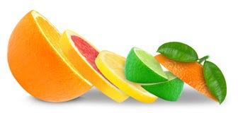 柑橘水果柠檬石灰桔子 免版税库存图片