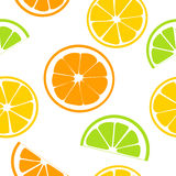 柑橘水果水多的切片 柠檬,葡萄柚,石灰,橙色 无缝的模式 库存例证