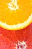 柑橘水果 库存照片