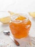 柑橘(橙色)果酱 库存照片