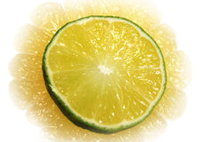 柑橘 库存图片