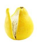 柑橘grandis柚 免版税库存照片