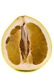 柑橘grandis 库存照片