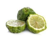 柑橘hystrix,香柠檬,非洲黑人石灰,在wh隔绝的水蛭石灰 免版税图库摄影