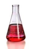 染料烧瓶实验室红色 图库摄影