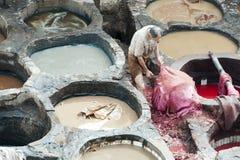 染色者在Fes,摩洛哥皮革厂  库存照片