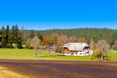 染黑典型农舍的森林 库存照片