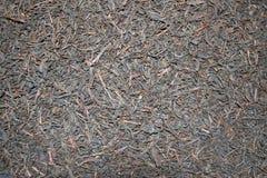 染黑批量茶 免版税图库摄影