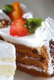 染黑蛋糕森林 免版税库存图片