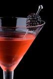 染黑鸡尾酒马蒂尼鸡尾酒多数普遍的系列 库存图片