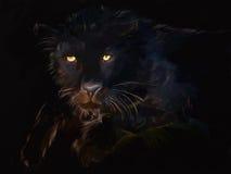 染黑panthera 库存照片
