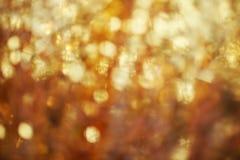 柔光提取背景-软的颜色 免版税库存照片