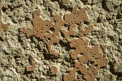 柔和曲调关闭了历史的混凝土和砖墙在西西里岛意大利 免版税库存照片