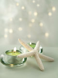 柔和的光场面软的温泉 免版税图库摄影