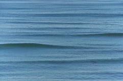 柔和的太平洋波浪 库存照片