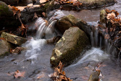 柔和的小河特写镜头在秋天的 图库摄影