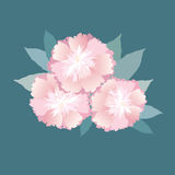 柔和的桃红色花花束  库存照片