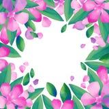 柔和的淡色彩与夹竹桃花的色的设计 免版税库存照片