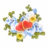 柔和的淡色彩和水彩绘画花和心脏 库存例证