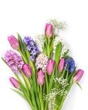 柔和的淡色彩色的花 免版税图库摄影